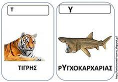 ΖΩ15 Pet Day, Animal Crafts, Literacy, Education, Animals, Animales, Animaux, Teaching, Animal Memes