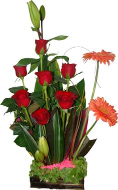 Love Rose, Base, Plants, Red Roses, Flowers, Floral Arrangements, Presents, Wood, Drawings