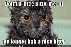 Poor thing... :)