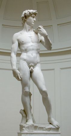 The Renaissance. Above the sculpture of David by Michelangelo, one of the great artists of the Renaissance. Renaissance Kunst, High Renaissance, Florence Renaissance, Italian Renaissance Art, Art Ninja, Giorgio Vasari, Art Sculpture, Clay Sculptures, Western Art