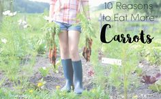 10 Amazing Health Benefits Of Carrots | Care2 Healthy Living