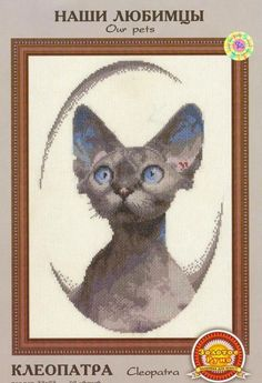Oriental Shorthair Cat Paws Pattern #5 Men-Women Adult Ankle Socks