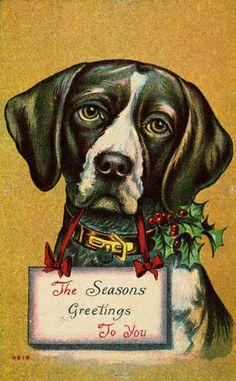 christmas dog by kerry flynn, via Flickr