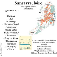 Wijnkaarten - Winebuddy Vin France, France Map, Pinot Noir, Loire Valley Wine, Wine Chart, Bordeaux Wine, French Wine, Sauvignon Blanc, Wine And Beer