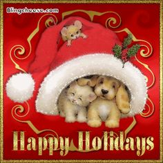 Discover & share this Holidays GIF with everyone you know. GIPHY is how you search, share, discover, and create GIFs. Christmas Kitten, Christmas Puppy, Christmas Animals, Merry Christmas And Happy New Year, Christmas Love, Christmas Holidays, Happy Holidays Pictures, Happy Holidays Quotes, Christmas Scenes