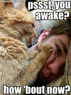 my cat once woke me up by profusely rubbing her face on my eye...
