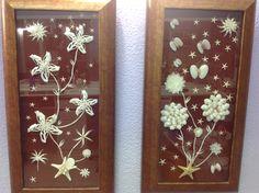Composición en cuadros de flores de conchas y estrellas de mar