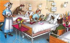 Eugen Hartung Artist Signed Mainzer Dressed Cats Hospital Visit Vintage Postcard Dressed cats fantasy by artist Eugen Hartung Cat family visiting kitten in hospital. Published by Alfred Mainzer this u
