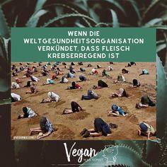 """Vegan Was Sonst 🌱's Instagram photo: """"⠀ Verarbeitetes Fleisch und rotes Fleisch sind nach der umfassenden Studie der Weltgesundheitsorganisation (@who - WHO) eindeutig…"""" Movies, Movie Posters, Instagram, World Health Organization, Films, Film Poster, Cinema, Movie, Film"""