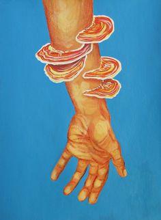 Reino Fungi - mista sobre sketchbook