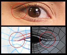 20_eye_far_corner.jpg (476×393)
