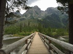 Grand Teton National Park is one of the most beautiful national parks & hiking is the best way to explore it! These are the best short hikes in Grand Teton.