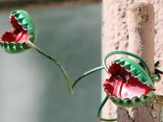 Venus Fly Trap Bottle Caps. Very Cute!