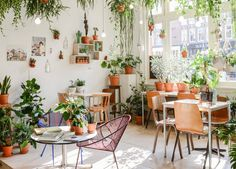 The Prettiest Plant Shops in the World- Wildernis