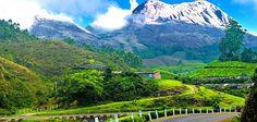 Munnar Tourism Munnar Travel Guide Tour Information - Munnar Kerala India