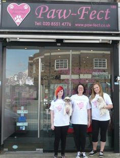 Here are apprentices from Writtle College that work in a dog grooming business. Paw-fect has been shortlisted for the London Apprenticeship Awards 2014 finals!