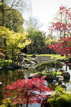Holland Park, London, England Holland Park, Great Britain, Explore, London England, Exploring