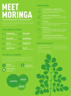 """Zija Moringa Infographic Discover what makes nature's """"miracle tree"""" one of the most beneficial and life-changing botanicals on the face of the earth Miracle Tree, Nature's Miracle, Herbal Remedies, Health Remedies, Natural Remedies, Health And Nutrition, Health And Wellness, Health Care, Moringa Recipes"""