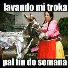 ★★★★★ Memes de chistosos: Lavando mi troca I➨ http://www.diverint.com/memes-chistosos-lavando-troca/ →  #memesderisaparacomentar #memesenlavidarealespañol #memesfrasesgraciosas #memesgraciososespañol #memesgraciososparafacebook2016