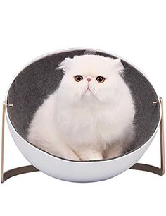 price error * Continue to the product at the image link. (This is an affiliate link) #CatHousesCondos