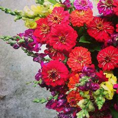 Floral Wreath, Bloom, Wreaths, Plants, Summer, Home Decor, Summer Time, Decoration Home, Door Wreaths