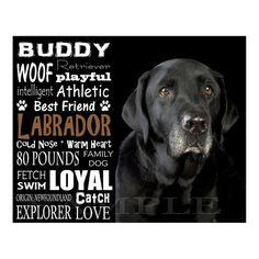 Black Labrador Retriever - Personalized 8x10 Unframed Dog Typography Art Photo.