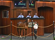 During a brisk day of trade, a colt by Orb topped Tuesday's opening session of the Ocala Breeders' Sales Company's April Sale of 2-Year-Olds in Training when selling for $685,000 to Three Chimneys Farm.  At the …