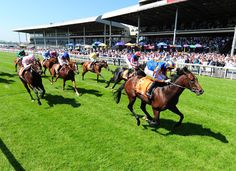 Irish Guineas Festival. One of the most famous international horse racing events in Ireland featuring the best of racing, food, fashion and fun for all the family
