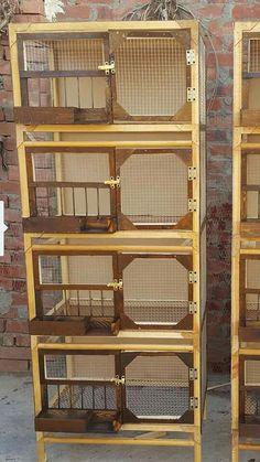 New pig eon loft Bird Cage Design, Diy Bird Cage, Bird Cages, Backyard Chicken Coop Plans, Diy Chicken Coop, Chickens Backyard, Rabbit Farm, Rabbit Cages, Chicken Pen