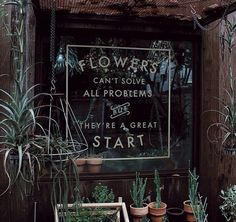 """""""Flowers can't solve all problems but they're a great start"""" - anon. #Greenspiration"""