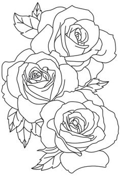 The linework of these large blooms give a lavish feel to this gorgeous design. Downloads as a PDF. Use pattern transfer paper to trace design for hand-stitching.
