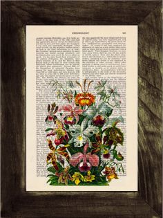 Vintage Book Print Dictionary or Encyclopedia Page Print by PRRINT, $7.99