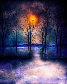 Winter Sonata II art print by Viviana Gonzalez #winter #art #prints