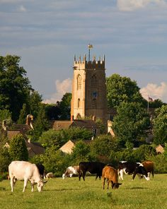 St. Peter's,      Winchcombe, Gloucestershire.