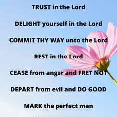 Eight Things To Do In Any Time Of Trial – Joyful Abundant Life Rest In The Lord, Love The Lord, My Love, People Need The Lord, Cast Your Burdens, Stuff To Do, Things To Do, Why Try, Jesus Is Coming
