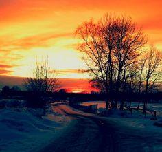 Cykelvägen hem. Skön vintersol