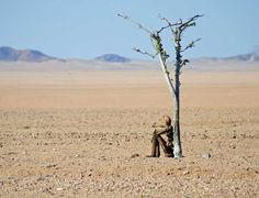 Namibia's far north-western reaches have always held mysteries and marvels. A new mystery has recently emerged, leaving all spectators intrigued - and curious. Travel News, Travel Guide, North Western, Lonely, Monument Valley, Westerns, Mystery, Marvel, Art