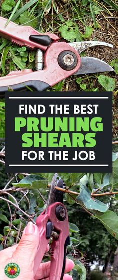 Pruning is a necessity, and you need the best pruning shears for your task. Learn all about these common tools and how to pick the best with our buyer's guide! Best Garden Tools, Garden Tool Shed, Garden Tool Organization, Garden Tool Storage, Storage Sheds, Pruning Tools, Pruning Shears, Gardening For Beginners, Gardening Tips