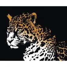 Jaguar scroll saw pattern - A great Jaguar pattern which is available for free download.