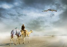 Desert Mafia Photography by Muhsin Aziz