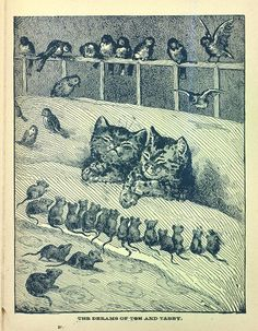 This and that and other chat - Page 35 Crazy Cat Lady, Crazy Cats, Louis Wain Cats, Gatos Cats, Photo D Art, Cat Cards, Art Graphique, Vintage Cat, Cat Drawing