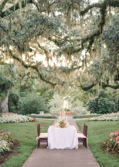 Photography : Pasha Belman Read More on SMP: http://www.stylemepretty.com/little-black-book-blog/2015/01/26/elegant-brookgreen-garden-wedding-inspiration/