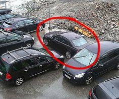 35 Hilarious Reactions To Bad Parking | Viral Guppy