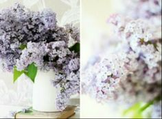 Lilac tranquility