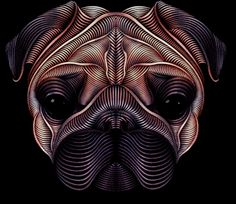 The Pug by Patrick Seymour, via Behance