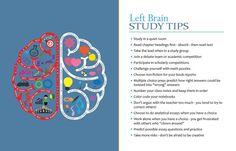 Left Brain Learners: Characteristics and Advice