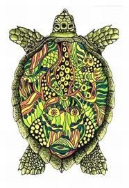 turtles are awesome