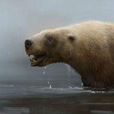 Rhamphotheca — Killer bite of the otter-bear. The unusual saber toothed marine bear, Kolponomos.
