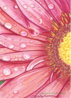 Original ACEO pink Daisy wet dew NFAC mix media drawing by Jenny Luan #Miniature