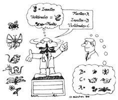 Estudio de Biología IV
